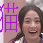 木村文乃 猫ひげ 笑顔
